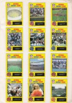 American Football , NFL , 1988